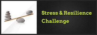 Download Stress & Resilience Information